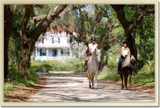 Enjoy a comfortable plantation trail ride at Camelot Farms