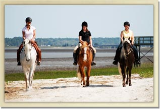 Coastal trail rides are always a favorite at Camelot Farms